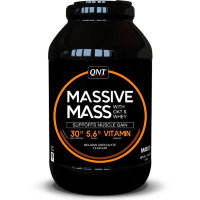 QNT Massive Mass 2,7 кг